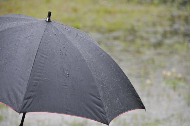 ジメジメを撃退したい!カビの原因にもなる梅雨時の湿気対策とは?